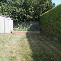 Backyard before dads 80th 016 copy 1024x683