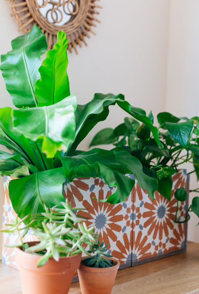 Diy cement tile planter 9